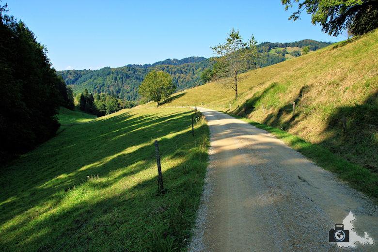 Rundwanderweg Münstertal