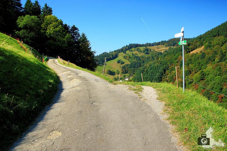 Rundwanderweg St. Trudpert im Münstertal - Scharfer Abzweig