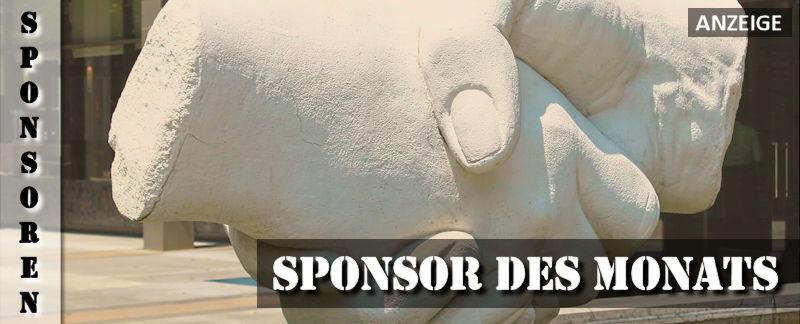 sponsor-des-monats-anzeige