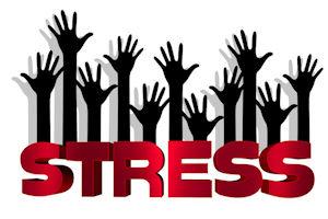 Stress im Hamsterrad