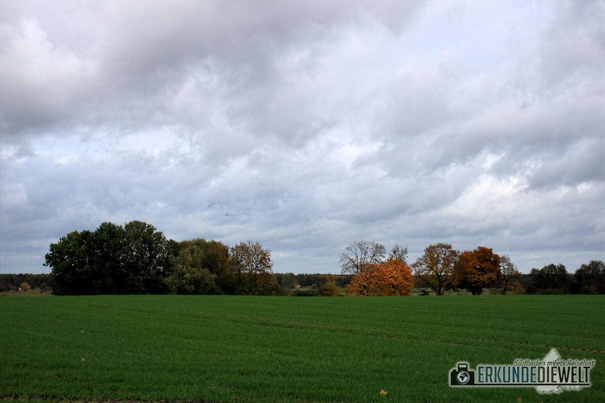 Canon EOS 760D Bilder - Impressionen Kremmen in Brandenburg