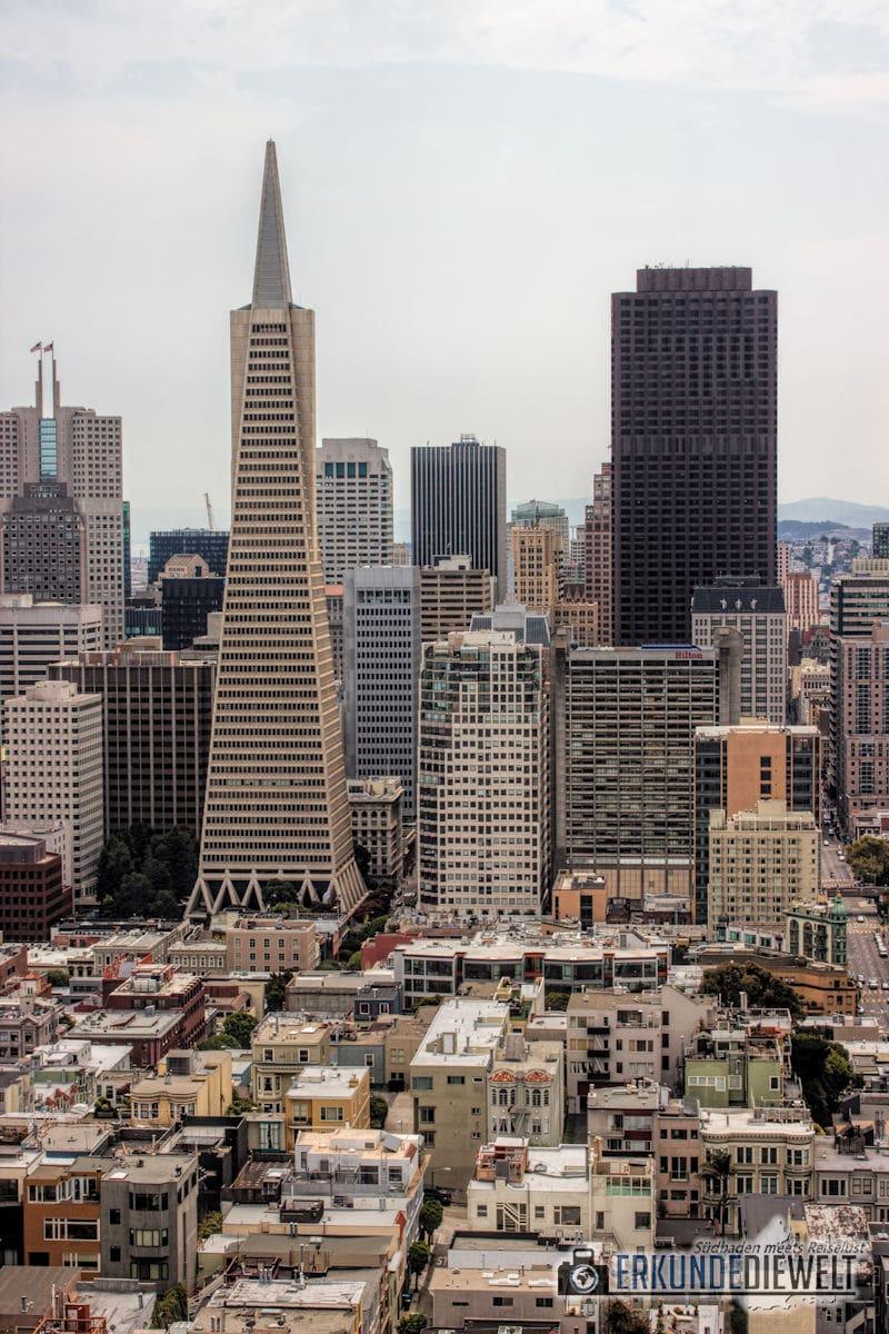 Transamerica Pyramid, San Francisco, Kalifornien, USA