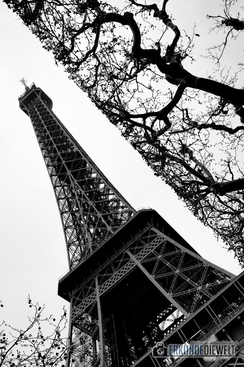 15fra0015-paris-eiffel-tower