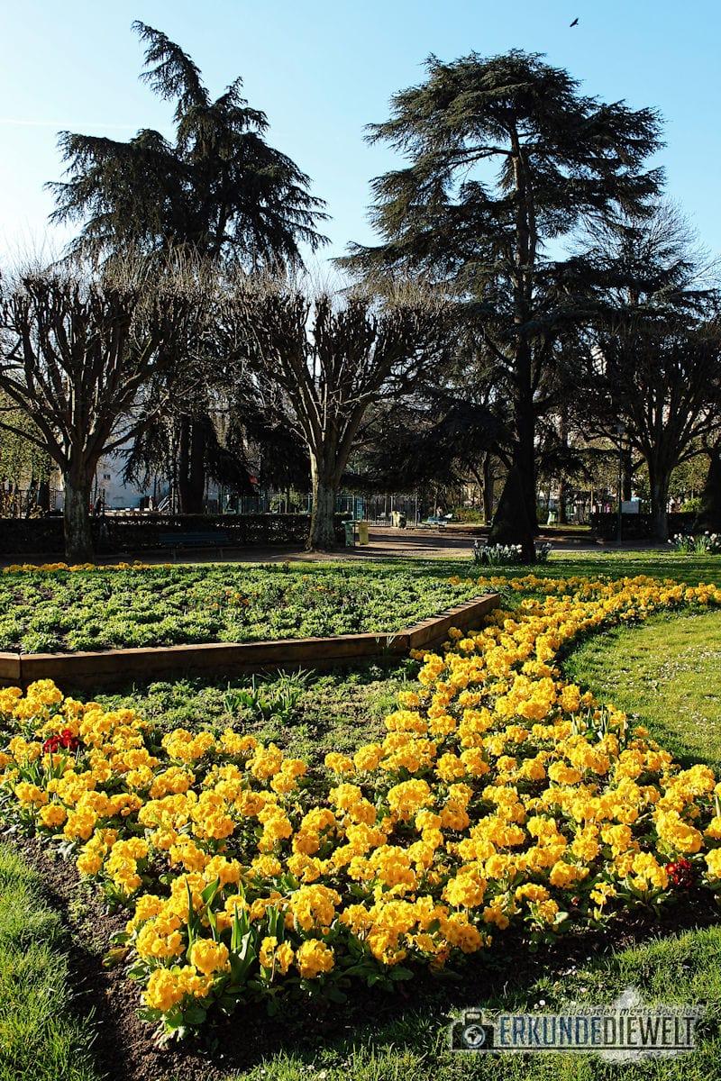 15fra0042-paris-jardin-des-plantes