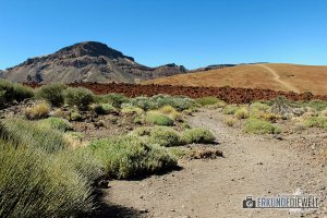 15spa0008-tenerife-teide-nationalpark