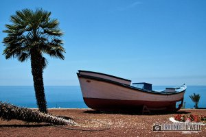 15spa0018-tenerife-palm-boat