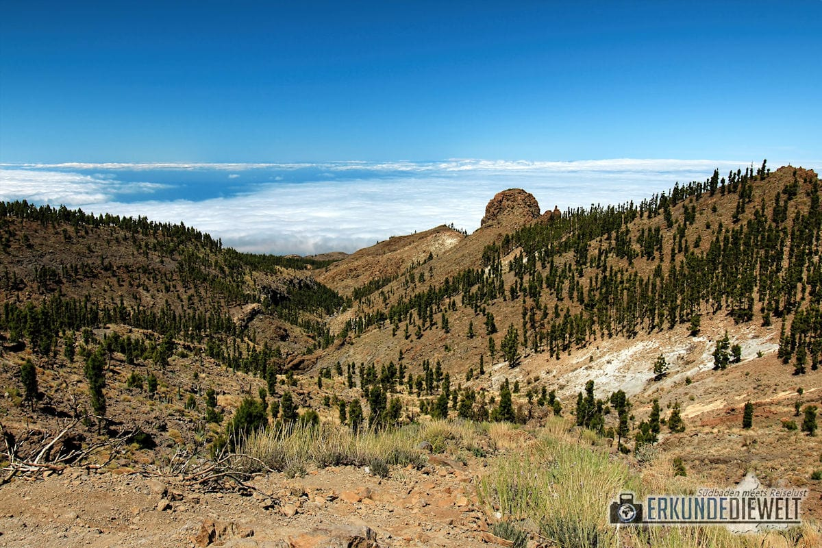 15spa0045-tenerife-teide-national-park