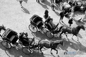Pferdektuschen am Grote Markt, Brügge, Belgien