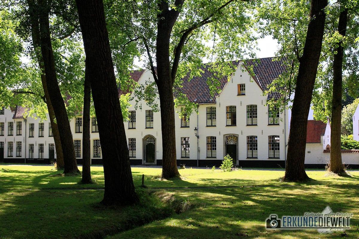 Begijnhof, Brügge, Belgien