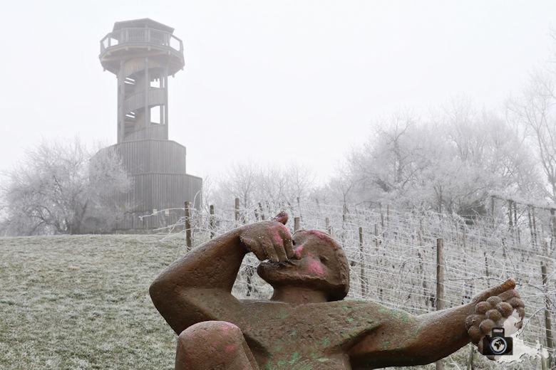 Fotowalk - Winternebel im Seepark Freiburg