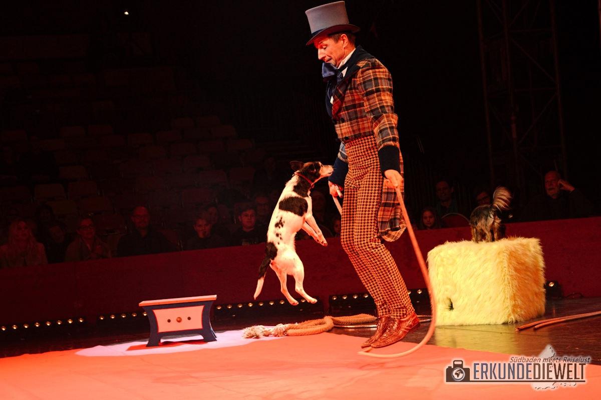 Zu Besuch im Weihnachtszirkus Circolo Freiburg