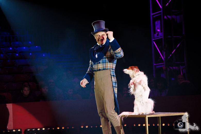 Fotografie-Tipps: Fotografieren im Zirkus - Leonid Beljakov