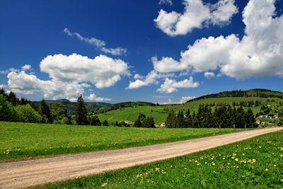 Schwarzwald Bilder