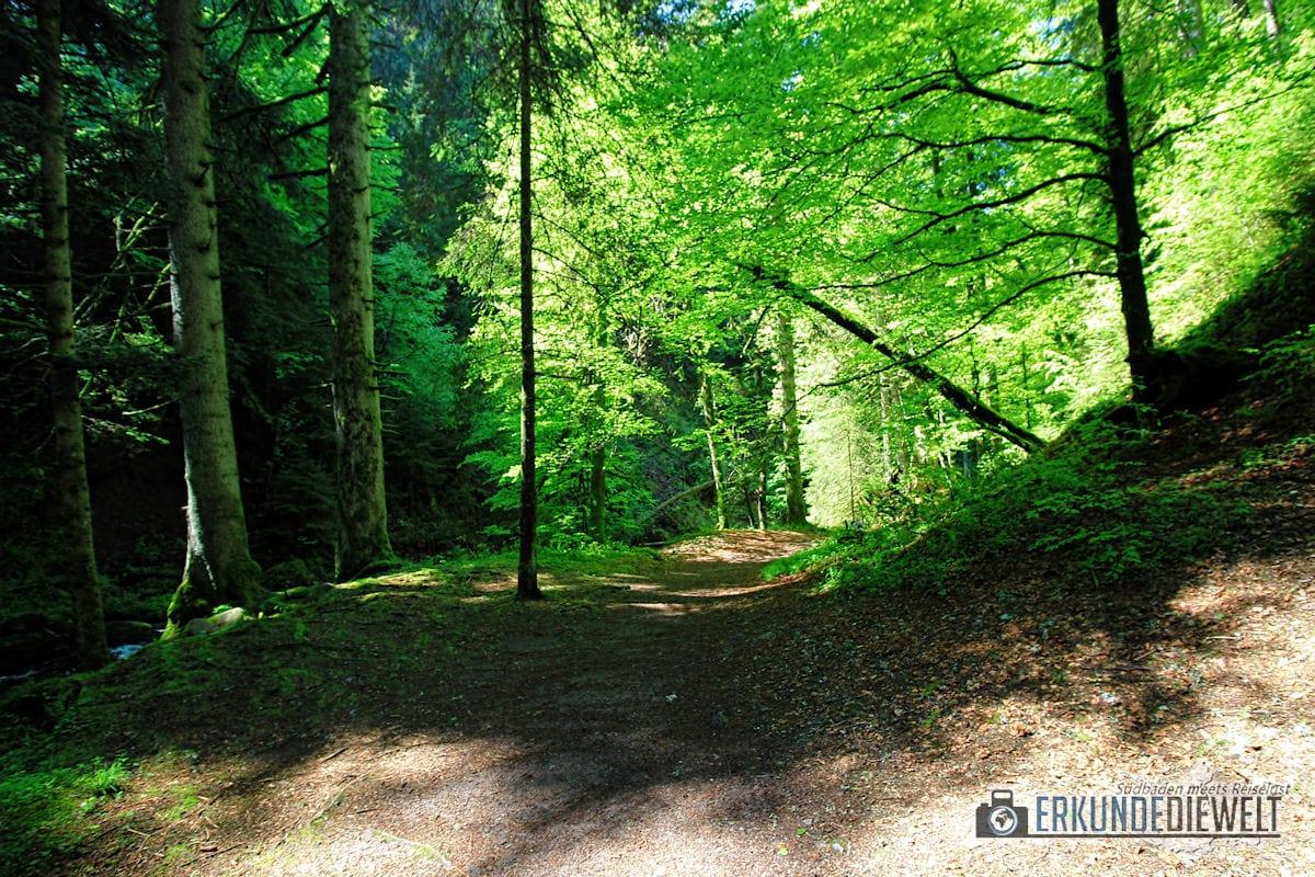 Ravennaschlucht, Schwarzwald, Deutschland