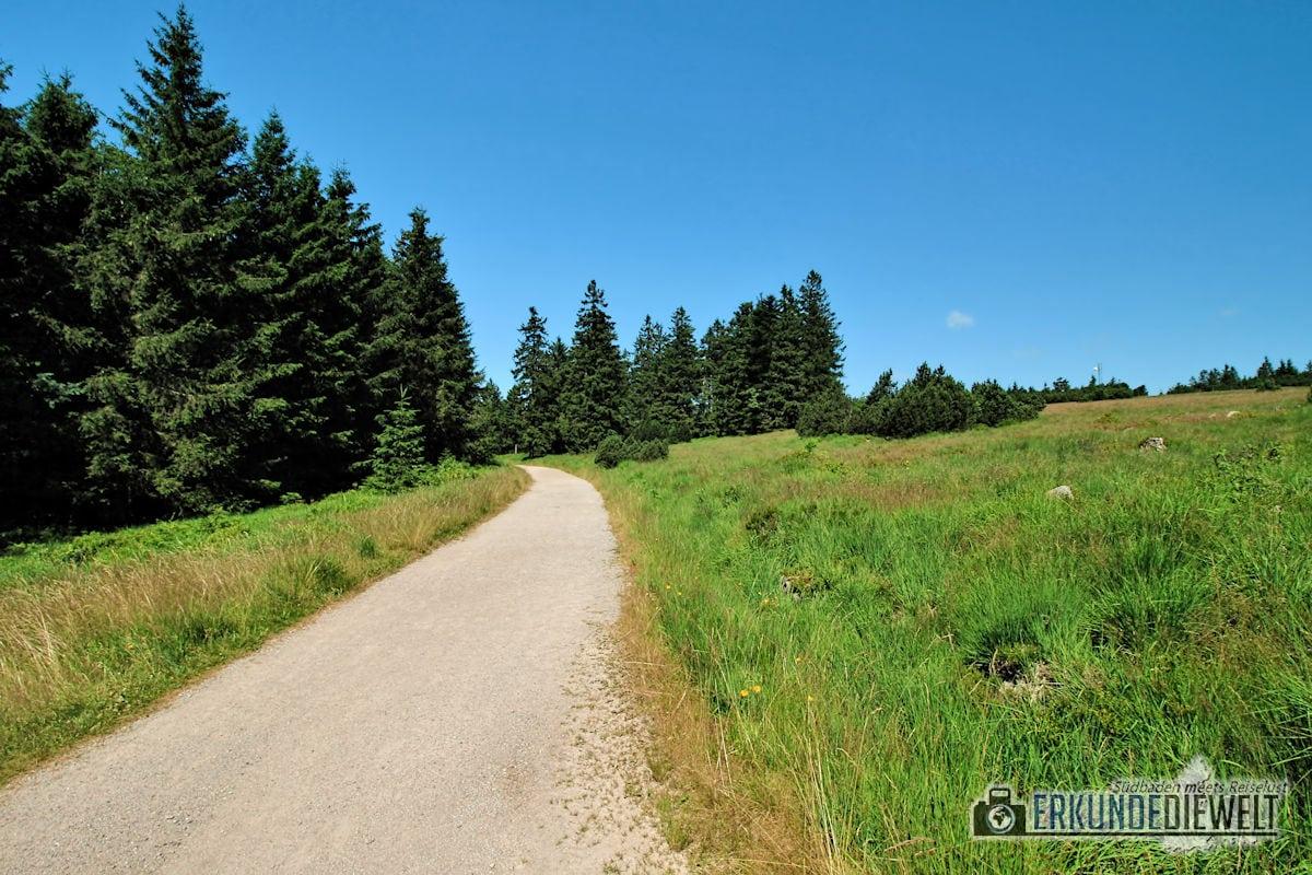 15DEU0114-nationalpark-schwarzwald