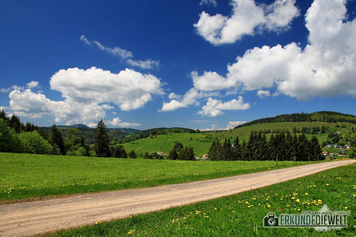 16DEU0125-schwarzwald-wanderung-martin-heidegger-rundweg