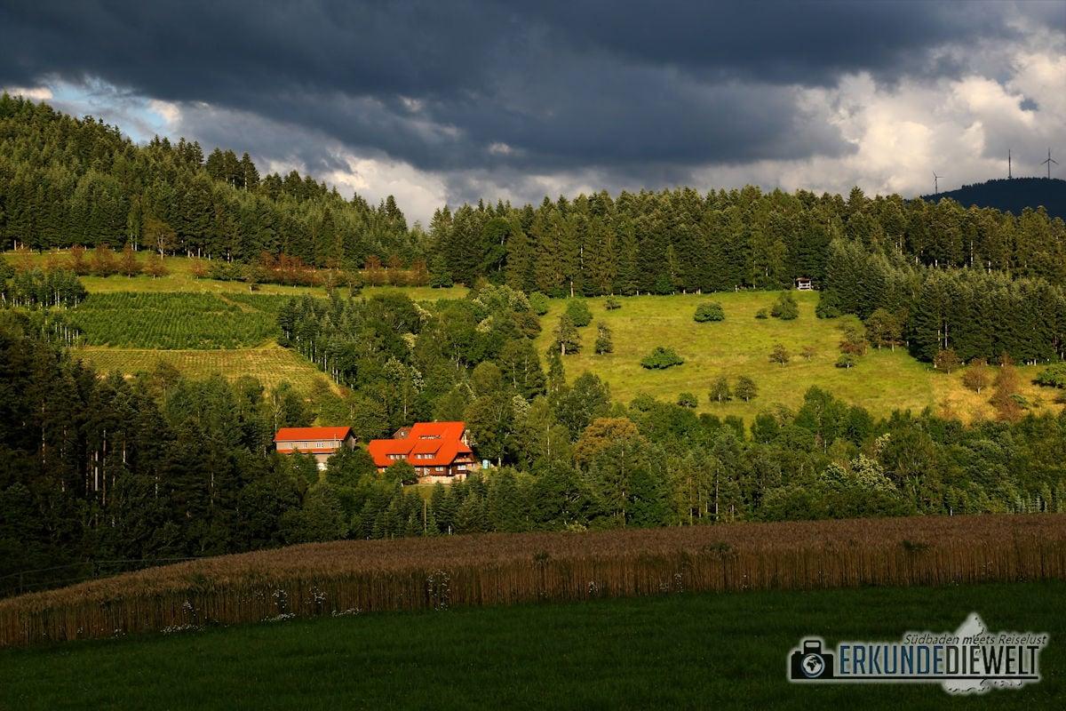 16DEU0145-schwarzwald-wanderung-hahn-und-henne-runde