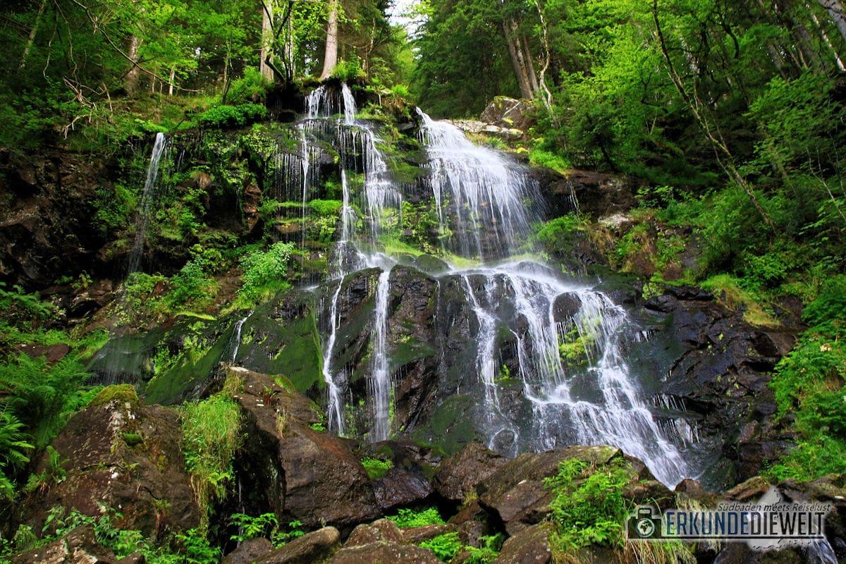 16DEU0171-schwarzwald-wasserfall