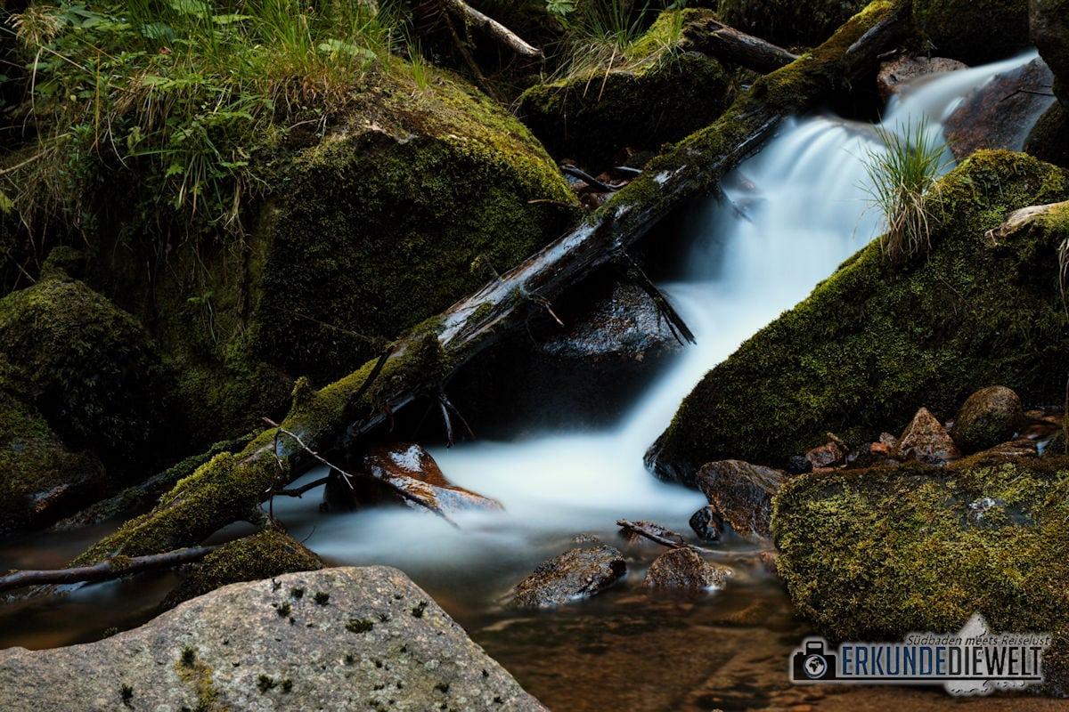 16DEU0176-schwarzwald-wasserfall