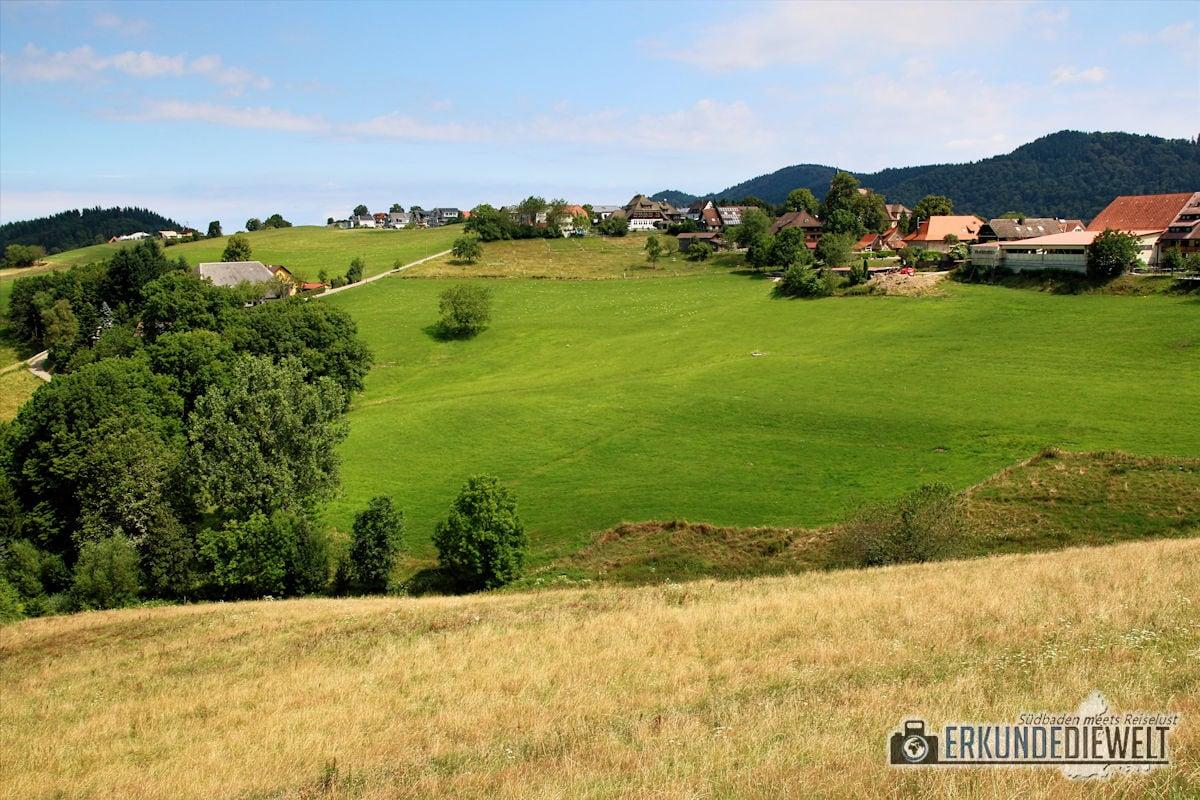 16DEU329-schwarzwald-schauinsland-wanderung-1200