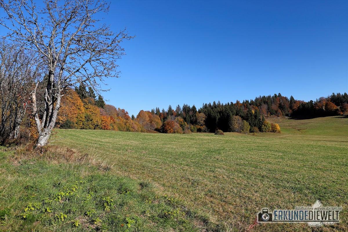 Ibacher Panoramaweg, Südschwarzwald, Deutschland
