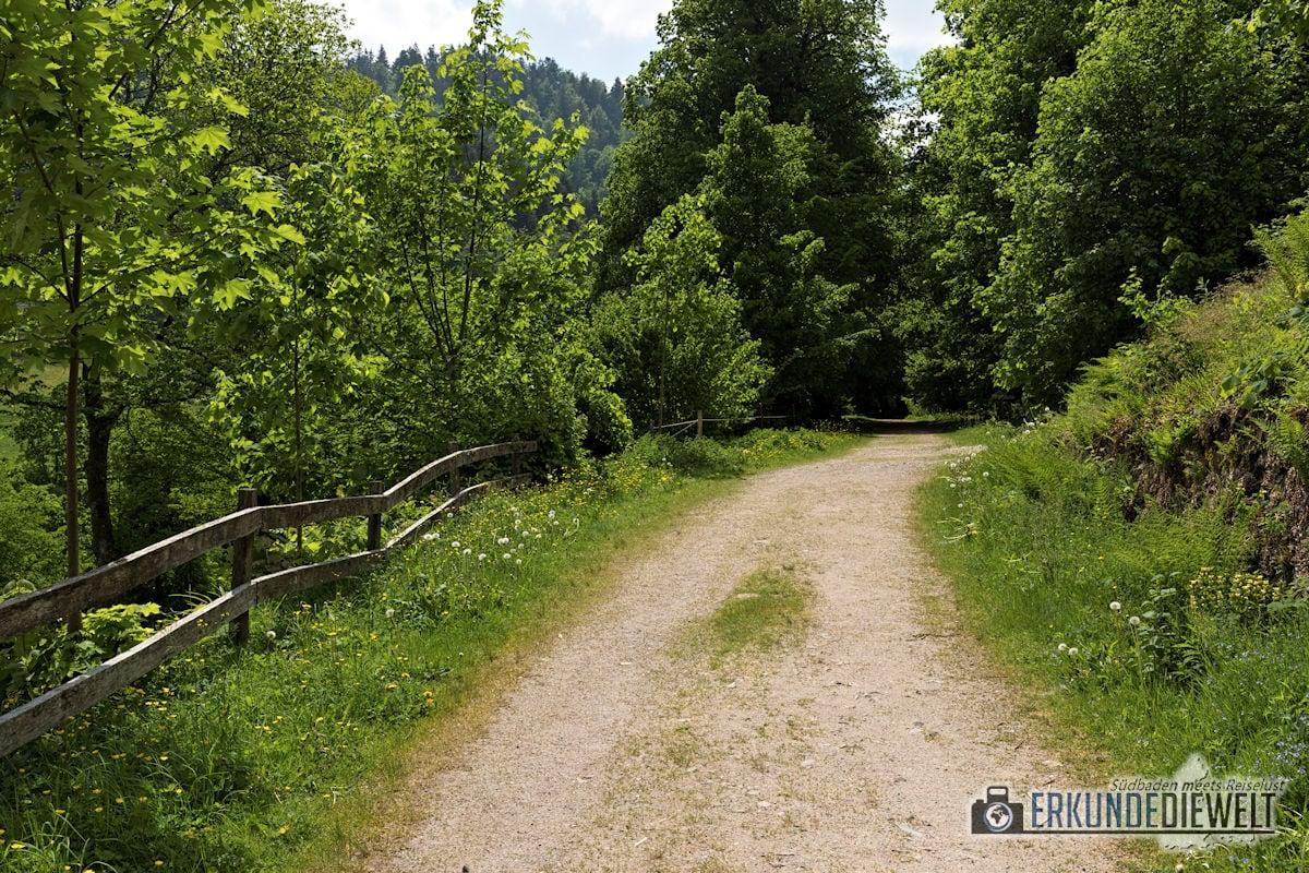Sagenrundweg Allerheiligen, Schwarzwald, Deutschland