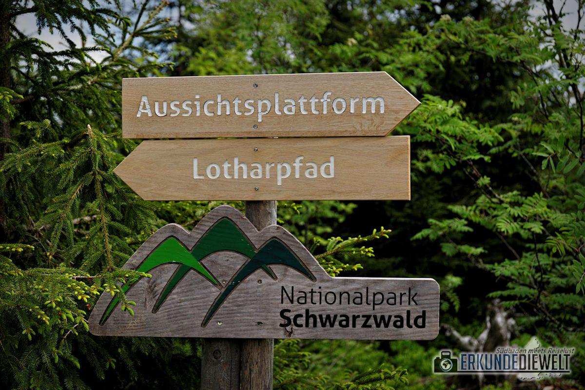 Lotharpfad, Schwarzwald, Deutschland