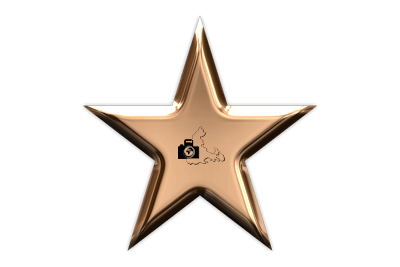 FopaNet Star in Bronze