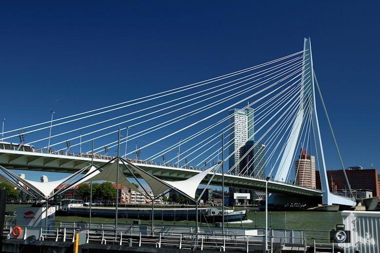 Rotterdam in den Niederlanden - Erasmusbrücke