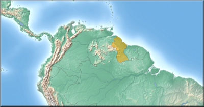Steckbrief Guyana
