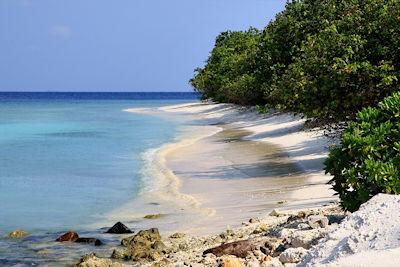Malediven Reiseberichte