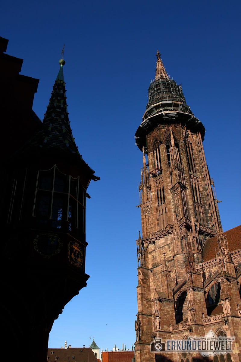 Münster, Freiburg, Deutschland