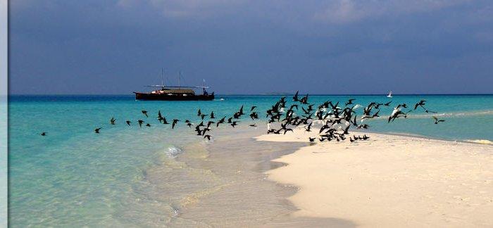 malediven-reisetipps-vorbereitung