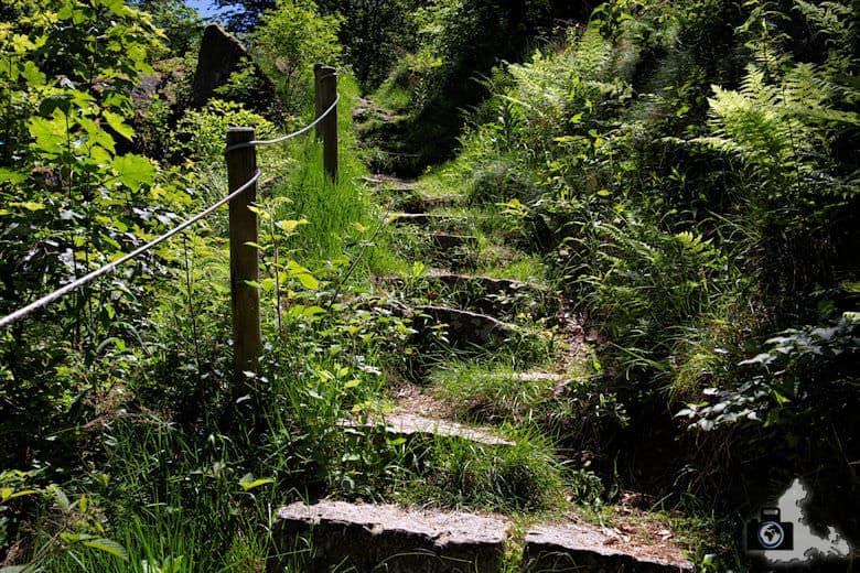 buehlertal-gertelbach-treppenstufen