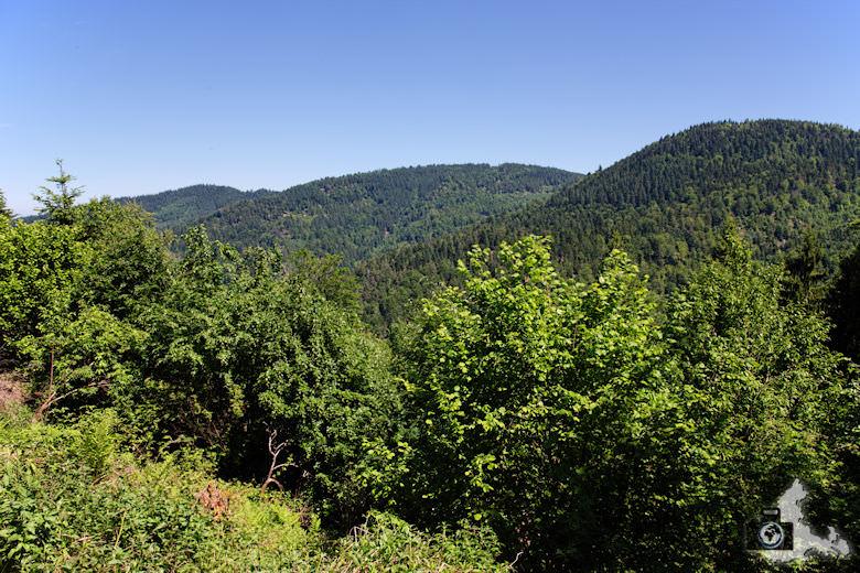 buehlertal-gertelbach-rundweg-ausblick