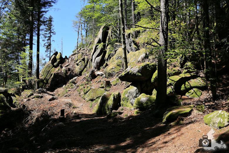 buehlertal-gertelbach-rundweg-falkenfelsen
