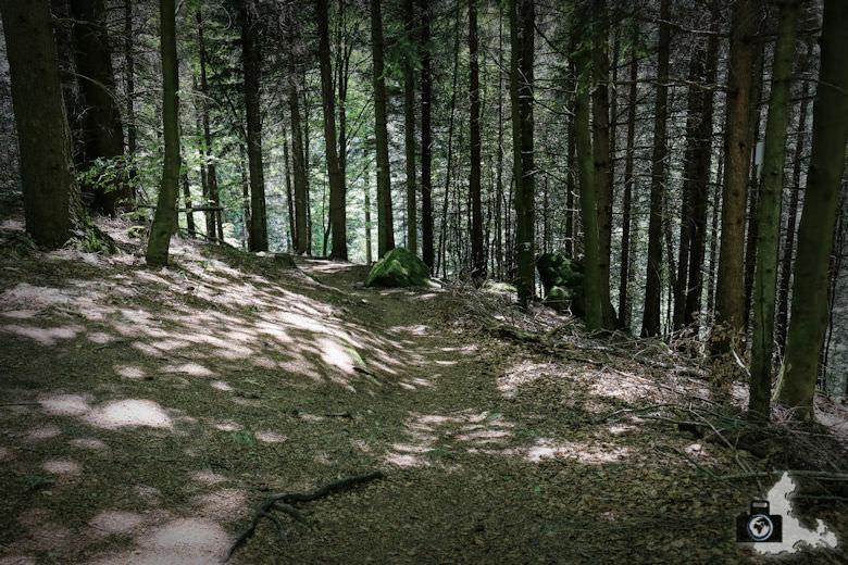 buehlertal-gertelbach-rundweg