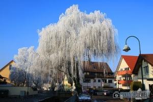 Winter in Freiburg St. Georgen, Deutschland