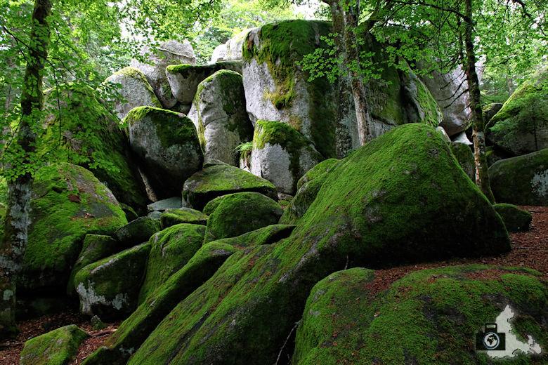 guenterfelsen-schwarzwald
