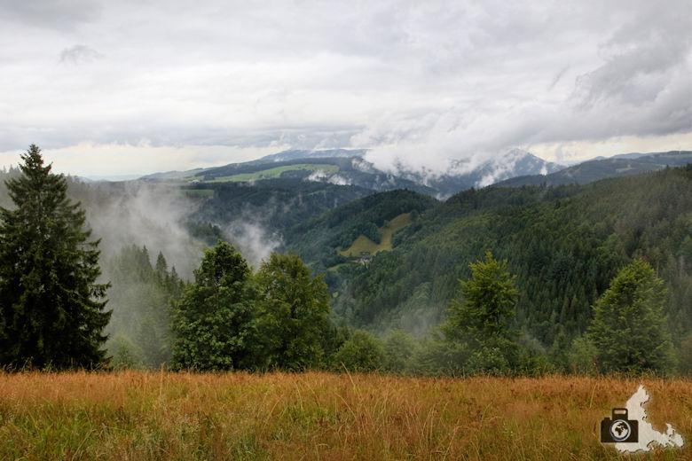 nebelschwaden-schwarzwald