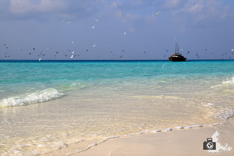 Malediven Sandbank Picknick