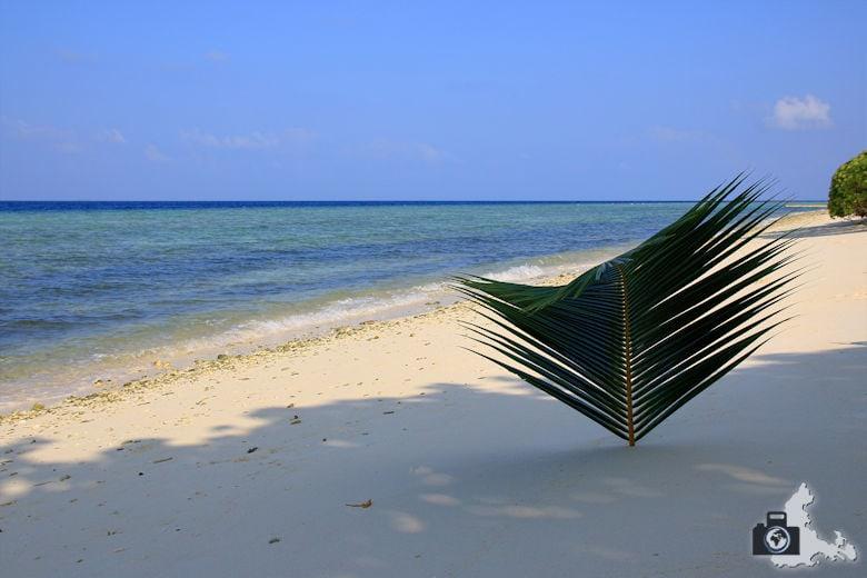Ukulhas Malediven - Strand, Meer, Palmenblatt