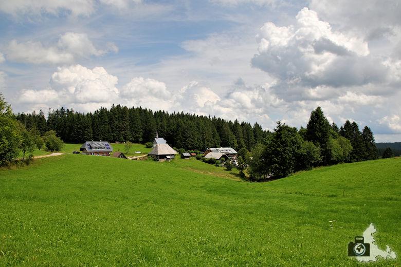 wanderung-brendturm-guenterfelsen-donauquelle-schwarzwald