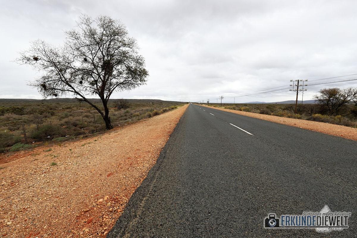 Garden Route, Kleine Karoo, Südafrika