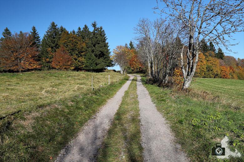 Ibacher Panoramaweg - Feldweg