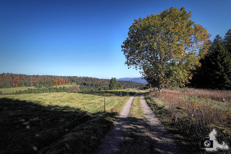Ibacher Panoramaweg - Herbstwanderung
