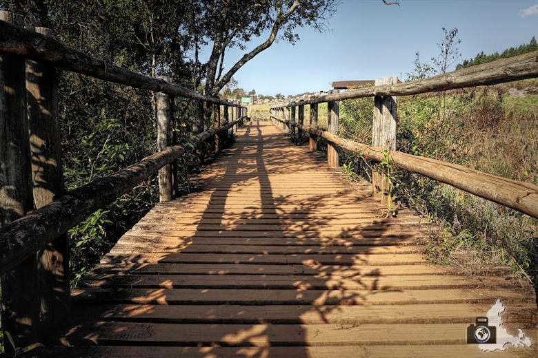Weg zum Mac Mac Fall, Blyde River Canyon