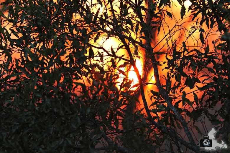 Safari Südafrika - Sonnenuntergang