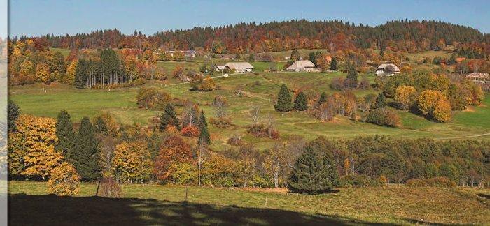 Ibacher Panoramaweg - Schwarzwälder Genießerpfad
