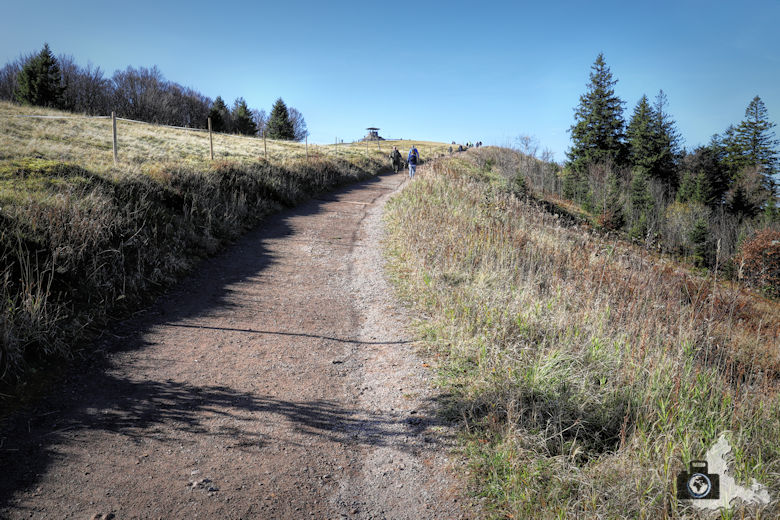 Wanderweg zum Kandel Gipfel